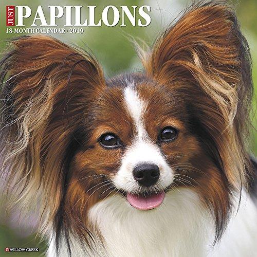 Just Papillons 2019 Wall Calendar (Dog Breed Calendar)
