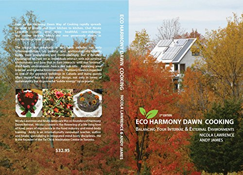 Innovative balancing the best amazon price in savemoney eco harmony dawn cooking balancing your internal and external environments fandeluxe Image collections