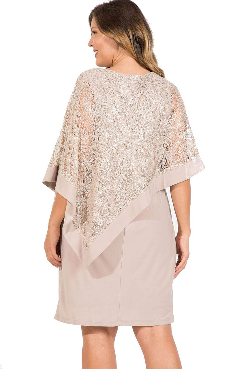 R&M Richards Mother of The Bride Plus Size Dress Champagne