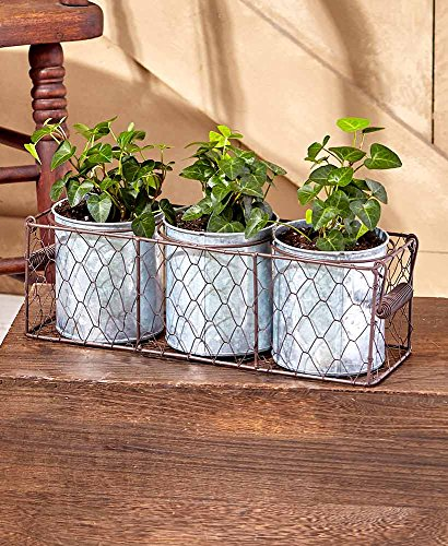 The Lakeside Collection Triple Pot Galvanized Planters in Wire Basket