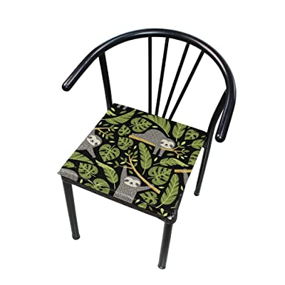 "Bardic HNTGHX Outdoor/Indoor Chair Cushion Cute Sloth Tropical Leaf Square Memory Foam Seat Pads Cushion for Patio Dining, 16"" x 16"": Home & Kitchen"