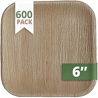 catereco cm cuadrado hoja de palmera juego de platos (600 unidades ...