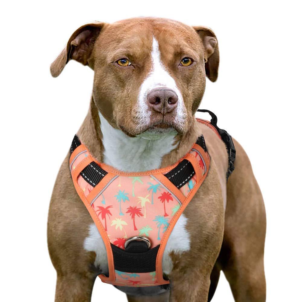Eagloo Arnés para Perro sin tirones, Acolchado, fácil de Instalar ...