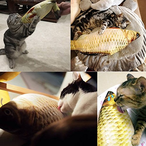 Coolfm Catnip Toys Set Simulation Fish Shape Doll Interactive Pets Pillow Chew Bite Supplies for Cat//Kitty//Kitten Fish Flop Cat Toy Catnip Crinkle Toys 3PCS