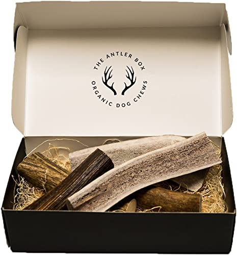 The Antler Box-Premium Elk Antler Dog Chews 1 lb Bulk Pack -Both Whole and Split Antlers-Long Lasting Organic Chewing Toys Sourced from Naturally Shed Antlers in The USA