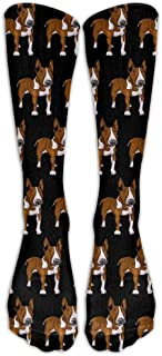 Bull Terrier Dog Pattern Unisex Novelty Premium Calf High Athletic Socks Fashional Tube Stockings Size 6-10