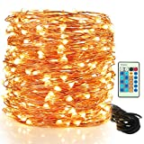 String Lights LED Fairy Lights - Moobibear 30M 300 LEDs Copper Wire Fairy Lights, Dimmable Lights with Remote Control, Decorative Starry String Lights for Indoor or Outdoor, Garden, Party, Christmas