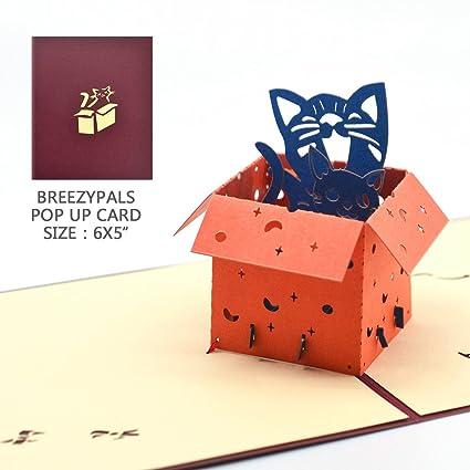 Amazon Pop Up Birthday Card Breezyplays 3d Thank You Cards