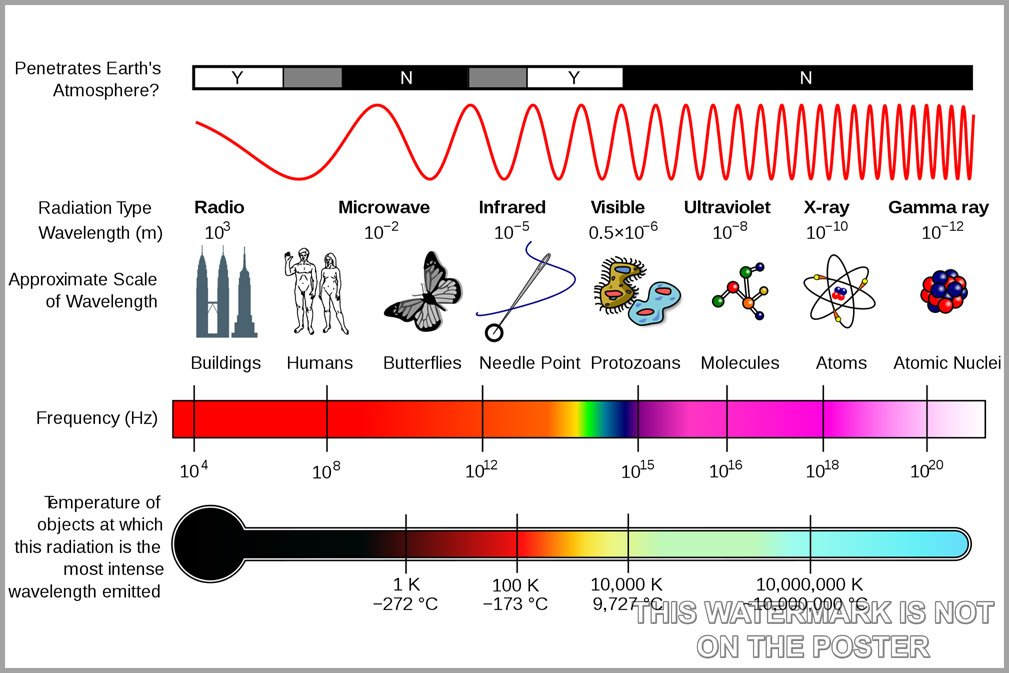 Amazon.com: Electromagnetic Spectrum - 24