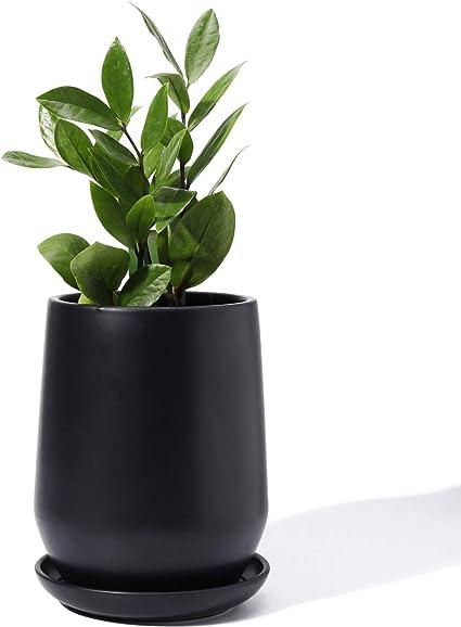 "Lovely Bonsai Pot /& Saucer 12/"" long NEW Black"