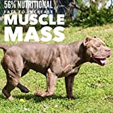 MVP K9 Formula Mass Weight Gainer for Dogs