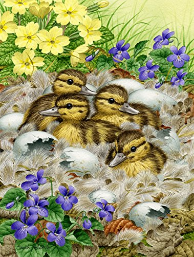 Mallard Duck House (Caroline's Treasures ASA2020CHF Mallard Duck Chicks Canvas House Size Flag, Multicolor, Large)