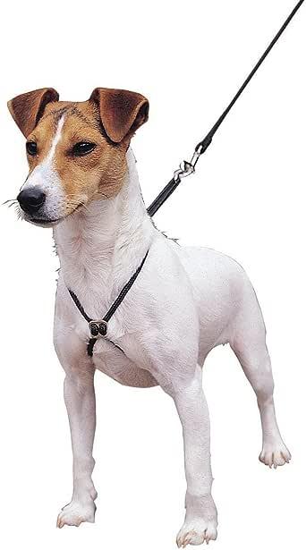 Lupi - Arnés de adiestramiento para perros (Mediana (M)) (Negro ...