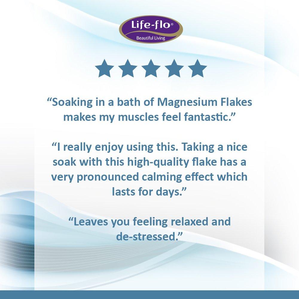 Life-Flo Health Care Living Pure Magnesium Flakes, 44 Ounce: Amazon.es: Salud y cuidado personal