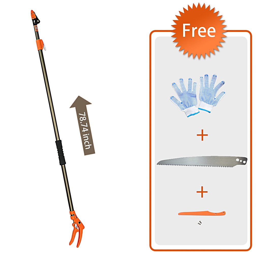 Finether Telescopic Pole Saw Long Reach Pole Pruner Lightweight Tree Trimmer with Bypass Pruner, Saw Blade, Guide Rod |Work Gloves for Free | Extends from 4.3 to 6.6 ft