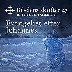 Evangeliet etter Johannes (Bibel2011 - Bibelens skrifter 43 - Det Nye Testamentet)    KABB