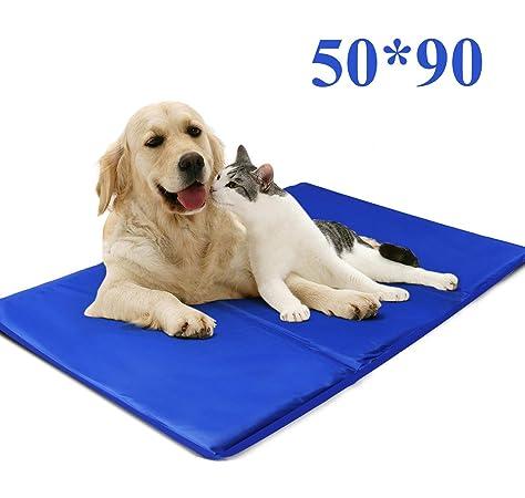 Fyore Alfombrilla refrescante para Mascotas Grandes Perro Gato Autoenfriamiento Manta de Dormir Fresco Perros/Gatos Perfecta para Camas de Suelo Couch Auto 50*90cm Antideslizante: Amazon.es: Productos para mascotas