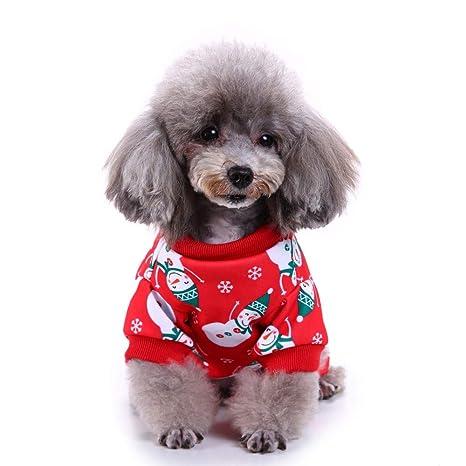 Fatchot - Camiseta de algodón para Perro o Gato: Amazon.es ...