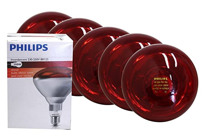 Pezzi vetro duro a infrarossi lampadina philips watt rosso e