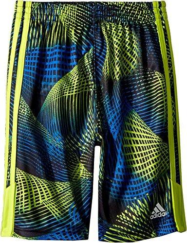 adidas Kids Baby Boy's Amplified Net Shorts (Toddler/Little Kids) Bright Yellow 3T
