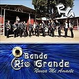 Nunca Me Amaste by Banda Rio Grande