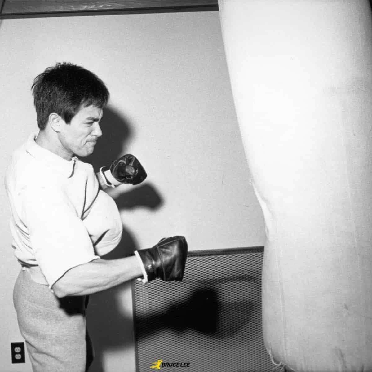 Bruce Lee Flying Man Training Gloves