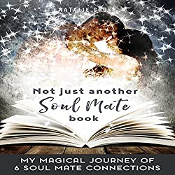 Not Just Another Soul Mate Book