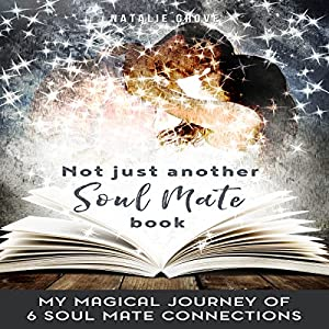 Not Just Another Soul Mate Book Audiobook