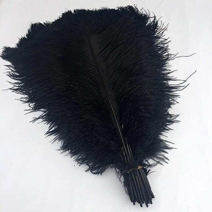 Edwardian Hats, Titanic Hats, Tea Party Hats Shekyeon Black 16-18inch 40-45cm Ostrich Feather DIY Craft Feather Pack of 10 $20.99 AT vintagedancer.com