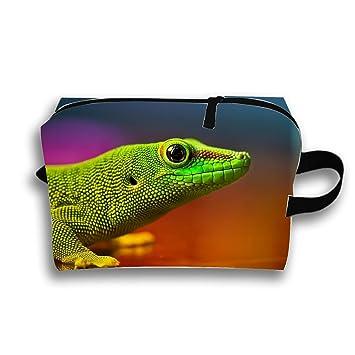 05a5e9498d6d Amazon.com : Multi-functional Green Lizard Makeup Bag/Travel ...