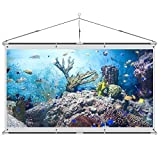 JaeilPLM 120-Inch Wrinkle-Free 4K HD DIY Indoor Projector Screen + Storage Bag Full Set