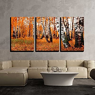 Orange Birch Grove x3 Panels 24