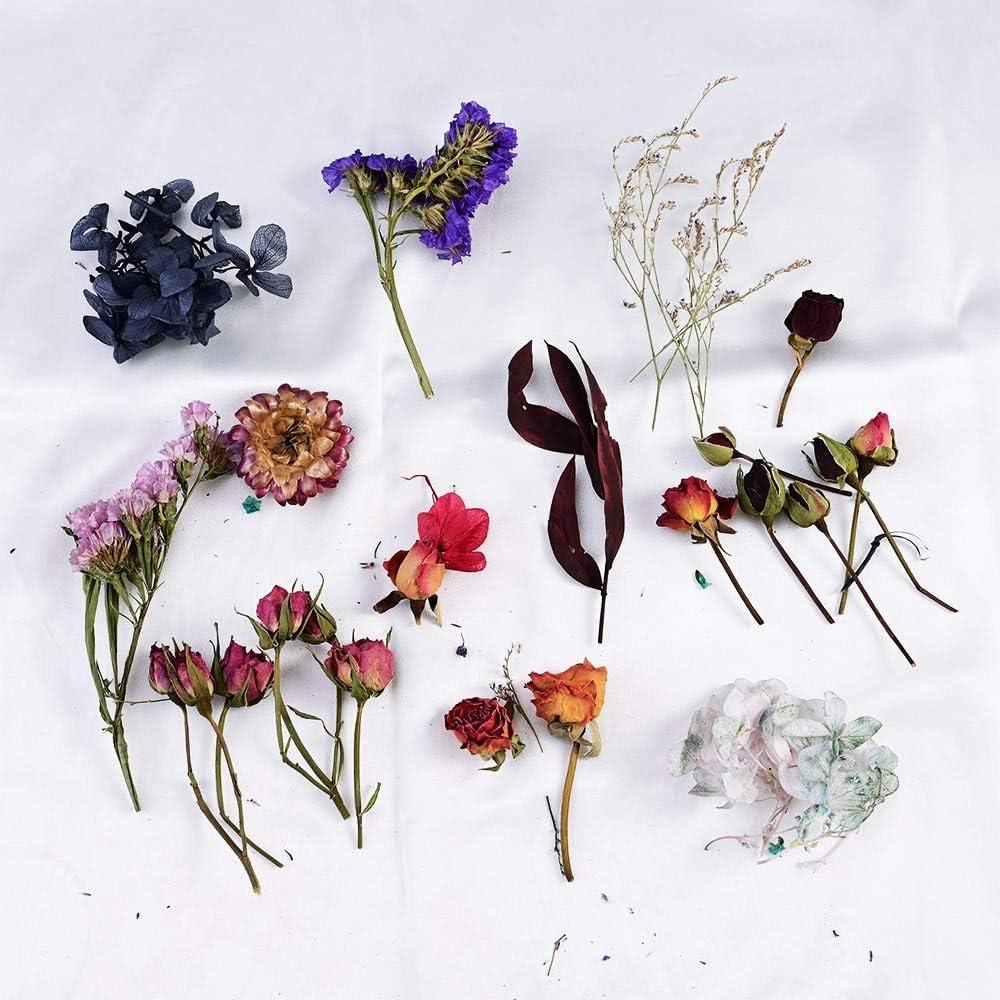 1 Box Dried Flower Plant Candle Epoxy Resin Jewelry Making Aromatherapy u s