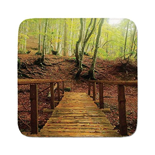 Cozy Seat Protector Pads Cushion Area Rug,Apartment Decor,Weathered Wooden Bridge over River Leads to a Footpath Between Birch Trees in Autumn Decorative,Easy to Use on Any Surface -