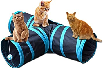 Migliori 7 Tunnel per gatti