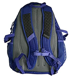 JanSport Women's Agave Laptop Backpack (Violet Purple - Black Label)