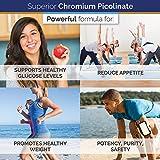 Superior Labs - Best Chromium Picolinate NonGMO