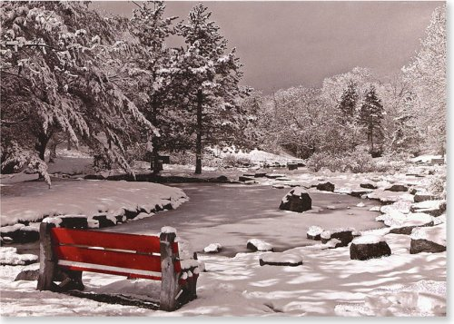 Bench Greeting Card - Snowy Bench (Christmas Cards, Holiday Cards, Greeting Cards) (Large Holiday Card Series)