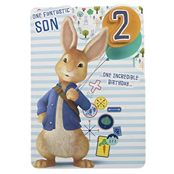 Hallmark Peter Rabbit 2nd Birthday Card For Son Happy Adventure