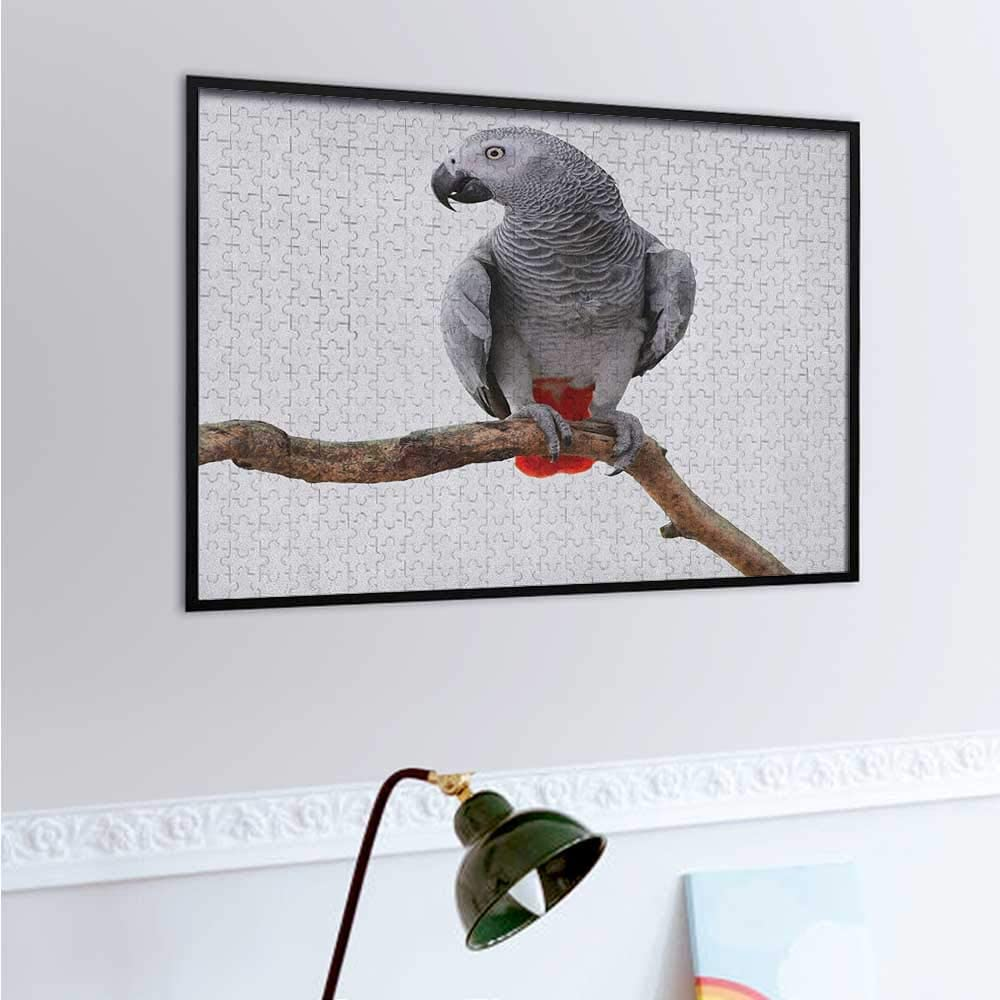 carmaxs Grey Puzzles for Kids 500 Piece, African Parrot Bird Psittacus Erithacus Standing on a Branch Tropical Nature Wildlife, Multicolor