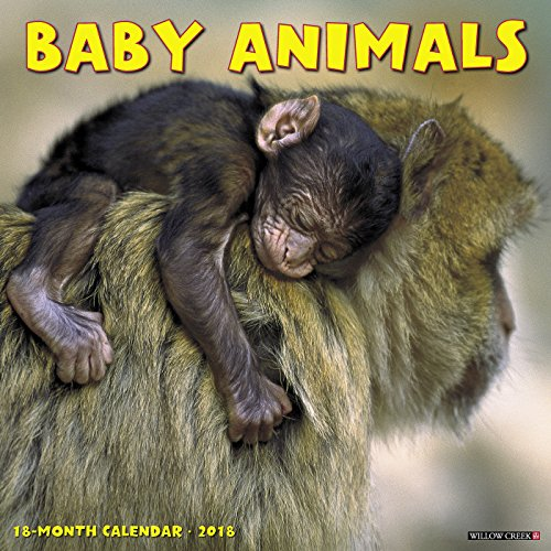 Baby Animals 2018 Wall Calendar