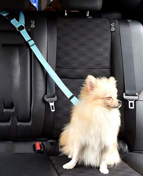 ZJFSL Cinturón de Seguridad para Perros- Tela de Nylon Material ...