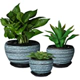SQOWL Blue Flower Pots Round Ceramic Succulent Herbs Cactus Planters Small to Medium Sized with Saucers for Home Balcony…