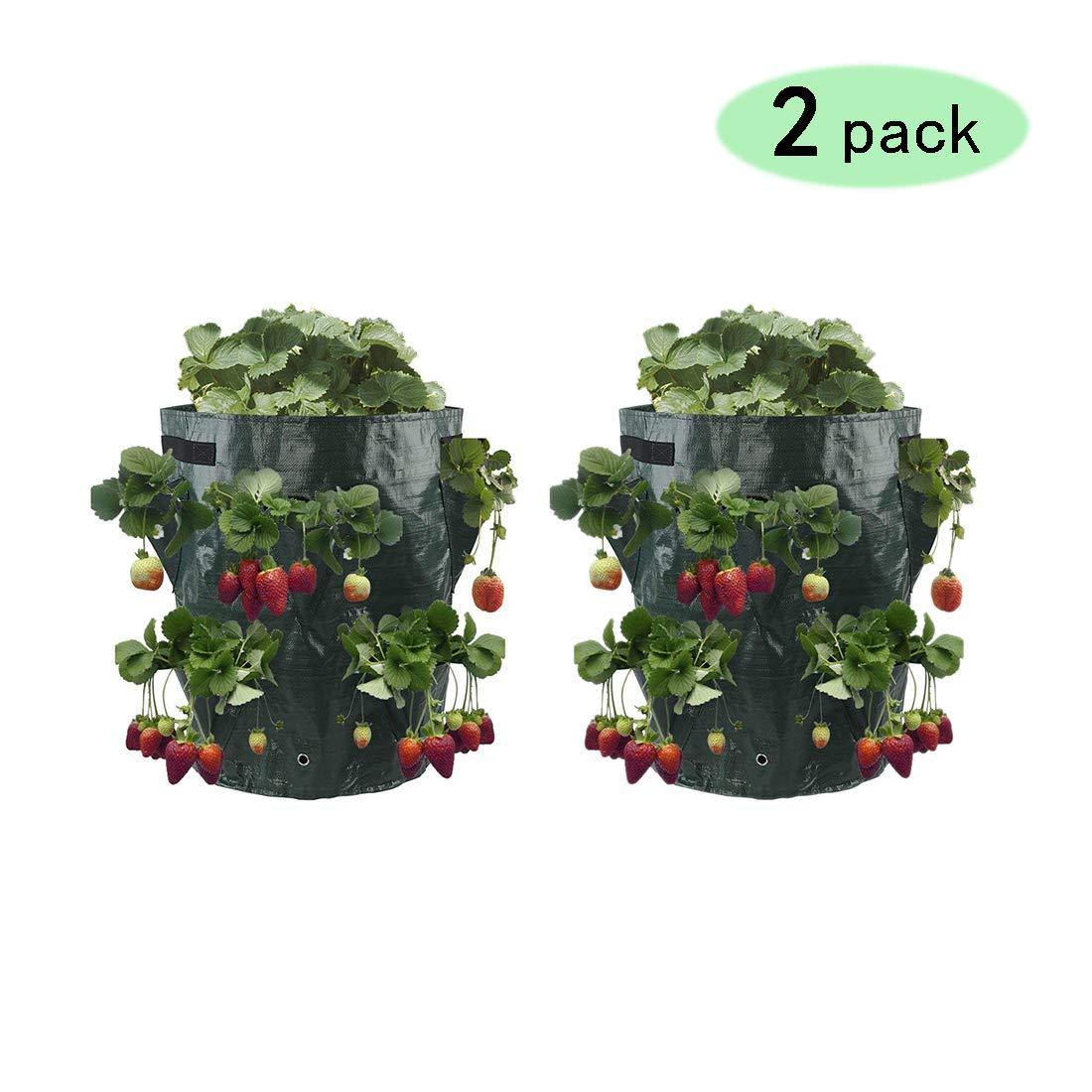 Rolanli Sac de Plantation 2pcs Sacs /à Plantes Fraisier Croissance Sac Avec 8 Poches Pour Plantation et Pot de Fleurs