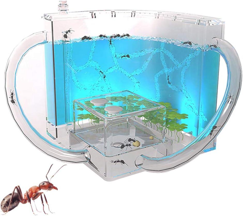 Ameisen zucht Box Acryl Transparent Ameise Farm Nest Ameisenzucht Feuchtigkeitsspendende Display Box Kinder Geburtstag Geschenke DIY Spielzeug