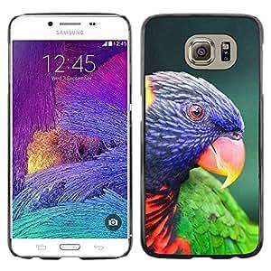 Paccase / SLIM PC / Aliminium Casa Carcasa Funda Case Cover para - parrot parolee tropical exotic bird - Samsung Galaxy S6 SM-G920