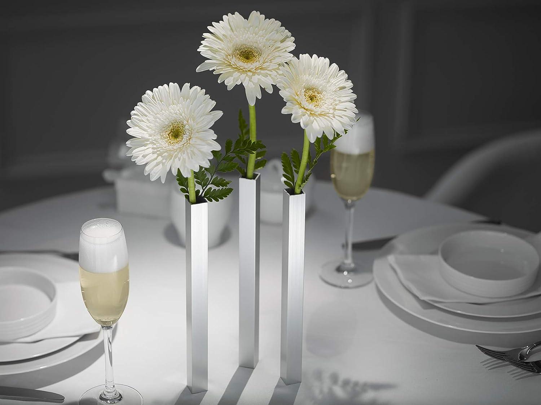 Magnetic Flower Vase