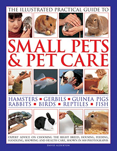 The Illustrated Practical Guide to Small Pets & Pet Care: Hamsters, Gerbils, Guinea Pigs, Rabbits, Birds, Reptiles, (Small Pet Care)
