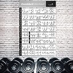 Dumbbell Workout Exercise Poster - NOW LAMINATED - Strength Training Chart - Build Muscle, Tone & Tighten - Home Gym Weight Lifting Routine - Body Building Guide w/ Free Weights & Resistance - 20\