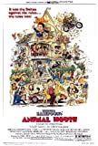 Animal House Movie Poster (11 x 17 Inches - 28cm x 44cm) (1978) Style A -(John Belushi)(Tim Matheson)(John Vernon)(Donald Sutherland)(Peter Riegert)(Stephen Furst)